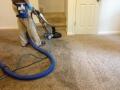Longmont-Carpet-Cleaning