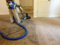 Longmont-Carpet-Cleaning